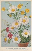 4-Fiori-Fleurs-Flowers-Blumen-Flores-Piccolo Formato-v.1956 In Busta - Fiori