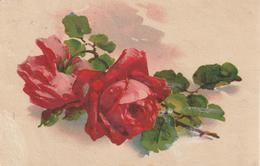 12-Fiori-Fleurs-Flowers-Blumen-Flor-v.1932-Catania X Ragusa Ibla - Fiori