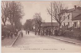 VOSGES - 6 - LIFFOL Le GRAND -  Avenue De La Gare  .D.D. - Liffol Le Grand