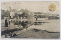 Boitsfort, Vue De L' Etang, Boschvoorde, 1911 - Watermael-Boitsfort - Watermaal-Bosvoorde