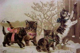 Cpa Gaufrée ADORABLE FAMILLE CHAT , PETITS CHATS A LA PORTE , 1902 ,  DRESSED CAT KITTEN   Early Pc KATZE Embossed - Chats