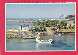 Modern Post Card Of Durban,KwaZulu-Natal,South Africa,,L59. - South Africa