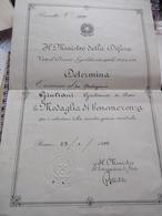 Diploma A Partigiana Per La Concessione Medaglia Di Benemerenza - Documents