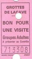 Ticket D'entrée Grottes De Lacave (Lot) Bon Pour Une Visite Groupes Adultes - Tickets D'entrée