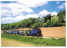Saint Lieux Les Lavaur Le Train Dans La Plaine De Salles Publication ACOVA-CFTT Toulouse N° 33 Cliché F. Saussède - Autres Communes