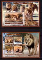 Burkina Faso, 2019. [bf1917] Fauna, Lions - Raubkatzen