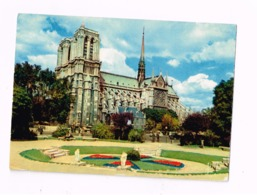 Notre-Dame Vue Du Square René Viviani.Expédié à Romilly-sur-Seine (Aube) - Notre Dame De Paris