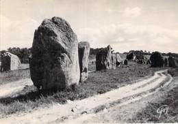 56 - CARNAC : Alignement Mégalithiques De KERMARIO - CPSM Dentelée Noir Et Blanc Grand Format CPA 1950 - Morbihan - Carnac