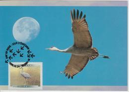 Canada Carte Maximum 1999 Oiseaux Grue 1636 - Maximumkaarten