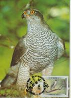 Canada Carte Maximum 1999 Oiseaux Autour 1633 - Maximumkaarten