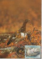 Canada Carte Maximum 2001 Oiseaux Lagopède 1840 - Maximumkaarten