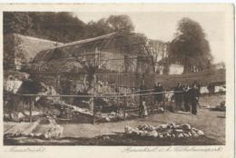 Maastricht - Berenkuil I.h. Wilhelminapark - Uitg. Weenenk & Snel, Den Haag - Mst. 23 - 1921 - Maastricht