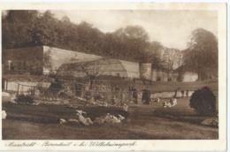 Maastricht - Berenkuil I.h. Wilhelminapark - Uitg. Weenenk & Snel, Den Haag - M. 507 - 1930 - Maastricht