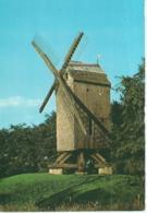 Knokke - Knocke - De Molen Van Het Kalf - Le Moulin Du Kalf - Uitg. Thill N.V. - Knokke