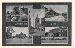 CPSM - Pays-Bas - Groeten Uit Ede - Ede
