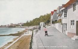 The Marine Parade , Lyme  Regis  -  Scan Recto-verso - Angleterre