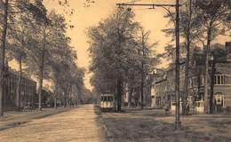 België  Brugge  Tram   Baron Ruzettelaan Assebroek     I 6136 - Brugge