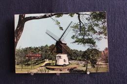 F-187 /  Flandre Occidentale -  Knokke-Zoute,  Le Vieux Moulin -  Photo Couleur  / 1957 - Knokke
