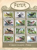Images Chocolat Peter. 20 Oiseaux Et Coquillages. Séries III Et IV.. Collées Sur Feuille Album Peter. Envoi 1,72 €. - Autres