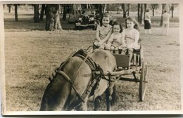 GIRLS ON CARRIAGE, NIÑAS SOBRE CARRUAJE, FILLES SUR LE TRANSPORT. FOTO PHOTO CIRCA 1940'S SIZE: 9X14 CM -LILHU - Personas Anónimos