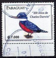 PARAGUAY Mi. Nr. 5077 O Unterrand (A-3-46) - Paraguay