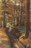 Illustrateur (Fantaisie) - Serie Harz Postkarten 215B - Oilette - [2] - Illustrateurs & Photographes
