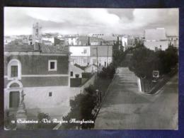 PUGLIA -BRINDISI -CISTERNINO -F.G. LOTTO N°473 - Brindisi