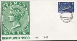 3410  Carta  Bermupex 1980 - Bermuda