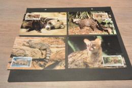 M6460- Set Maximum Cards -Central Africa - 2007  -Civet-Genet-  - Weight 20gr. - Cartoline Maximum