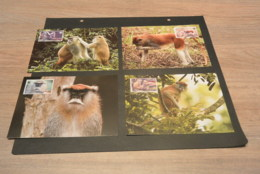 M6465- Set Maximum Cards - Sierra Leone - 2004 - Patas Monkey - Fish  -  - Weight 20gr. - Cartoline Maximum