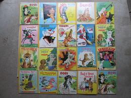 20 Livres (bibliothèque Roses ) - Magazines