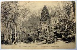 79 - NIORT (Deux Sèvres)- Allée Basse Du Jardin Public - Niort