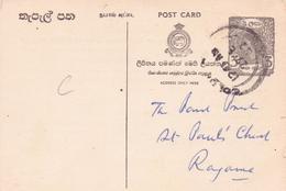 Seltene Alte  POSTKARTE / Sri Lanka  - Geschäftspost / Reklamepost -  Gelaufen / Alter Unbekannt !! - Sri Lanka (Ceylan) (1948-...)