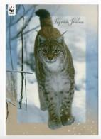 Postal Stationery  FINLAND - WWF - PANDA LOGO - LYNX - Postage Paid - REINDEER On STAMP - Finlande