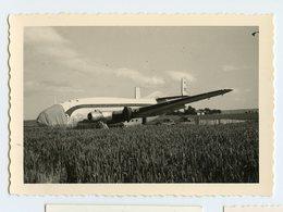 Lockheed Constellation Avion Ligne France 50s Accident Crash RARE SNAPSHOT AMATEUR Etrange Surrealiste NEZ - Aviation