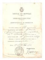 """DS--00006-- CITTA DI RIVOLI - UFFICIO DELLO STATO CIVILE - CERTIFICATO DI NASCITA """" RIVOLI 29 SETTEMBRE 1901 - Vecchi Documenti"""