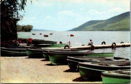 New York Woodville Canandaigua Lake Shoreline 1959 - Other