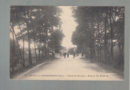 CPA (18) Neuvy-sur-Barengeon - Route De Bourges - Avenue Des Accacias - Francia
