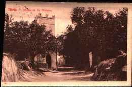 5415) CARTOLINA DI Tripoli-strada Di Bu-meliana Con 5c. Leoni Soprastampato Libia VIAGGIATA - Libia