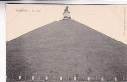 WATERLOO. LE LION. WILHELM HOFFMANN. VINTAGE VIEW CPA CIRCA 1904's - BLEUP - Waterloo