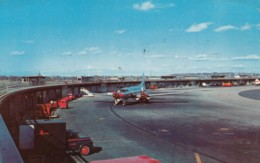 Logan Airport East Boston Massachusetts, Terminal Building, Propeller Plane On Tarmac, C1950s Vintage Postcard - Aerodromes