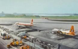 Lindbergh Field San Diego California, Municipal Airport, Planes Equipment, C1960s Vintage Postcard - Aerodromes