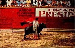 Bull Fight Un Recorte - Corrida