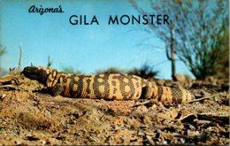 Arizona's Gila Monster - Other