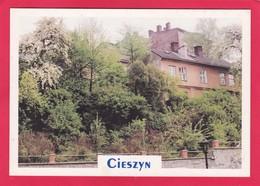 Modern Post Card Of Cieszyn, Śląskie, Poland,L60. - Poland