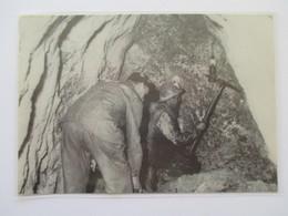 (1960) Mine De Sel De BEX (Canton De Vaud) - Mineurs  - Coupure De Presse Originale (Encart Photo) - Documents Historiques