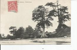 LIBREVILLE    Pointe Louis    S.H.O - Gabon