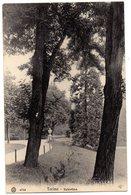 CPA     TORINO     VALENTINO       PARC JARDIN - Parcs & Jardins