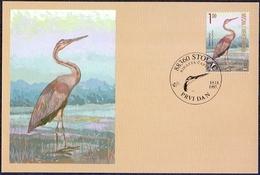 Bosnia And Herzegovina (Croatia) - The Fauna Of BiH: The Heron, Maximum Card, 1997 - Birds