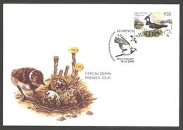 Belarus - Vanellus Vanellus, FDC, 2006 - Birds
